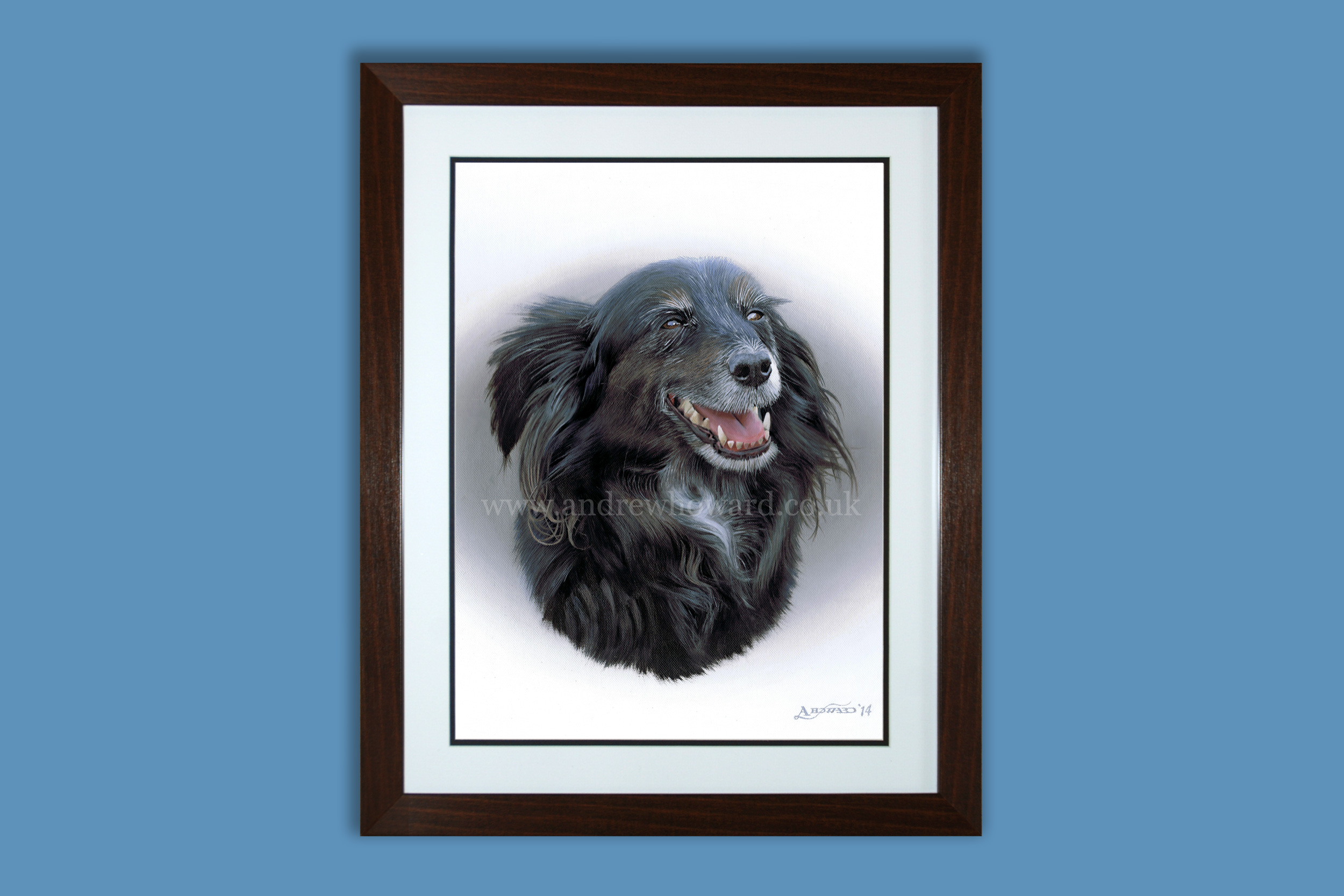 Andrew Howard Art - Border collie dog oil painting